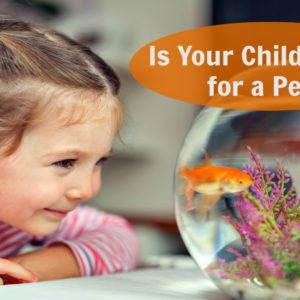 Is your child READY for a PET?  5 Questions to Ask Before You Say YES